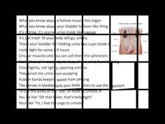 Urinary System Song - YouTube
