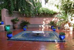 from Jardins Majorelle in Marrakech, 1919 home of artist Jacques Majorelle, gardens and house restored by Yves Saint Laurent