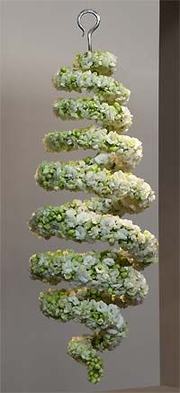 Spiral with white Kalanchoe - Floral worlds in a class | Fleurop