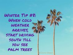 Yes! Winter Hacks, My Happy Place, Palm Trees, Weather, Cold, Beach, Flowers, Plants, Palm Plants