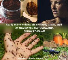 FUSY Z KAWY i 24 nietypowe i niezwykłe przepisy na zastosowanie fusów i kawy