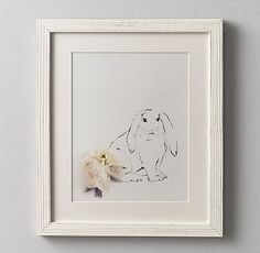 Botanical Photography Bunny