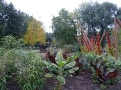 Bananstauden und Bambus