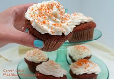Individual Carrot Cakes - Great for Easter parties, picnics and school bake sales.