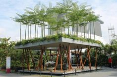 Natuur gecombineerd met architectuur, hoe mooi is dat? @IVNNederland @blancoarchitect @Gek_op_Groen #duurzaamheid via https://www.pinterest.com/dakwaarde/