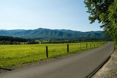 Cades Cove is a gorgeous 11 mile loop in the Great Smoky Mountains