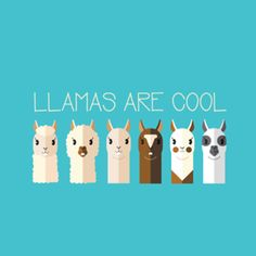 Almofada Llamas are Cool do Studio Nathaliabarbosa por R$55,00