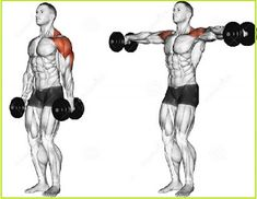 Illustration about Lifting dumbbell in hand. Exercising for bodybuilding. Target muscles are marked in red. Illustration of target, lifting, bodybuilding - 43667061 Push Day Workout, Gym Workout Tips, Dumbbell Workout, Workout Routines, Fitness Routines, Fitness Workouts, Fitness Tips, Trainer Fitness, Easy Fitness