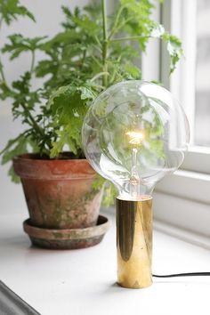 gold and bulb lamp