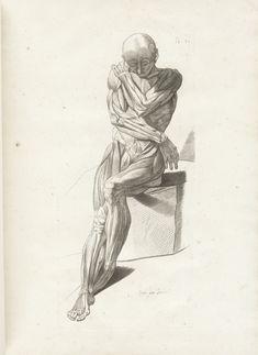 Jacques Gamelin (https://www.pinterest.com/pin/287386019949273739), Nouveau receuil d'ostéologie et de myologie dessiné d'après nature. (Toulouse, 1779 https://www.pinterest.com/pin/287386019949122031).