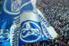 FC SCHALKE 04 (114)