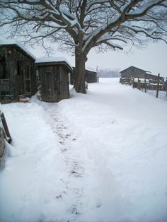 """Frank Keister of Petersburg,WV says """"Beautiful day on the farm!"""" #WHSVsnow"""