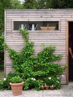 contemporary horizontal wood garden shed Need this for