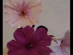 """Tall and graceful, will look lovely, anytime, anywhere in any form of decorations. Very easy to make and step by step instructions. Please feel free to """"like..."""