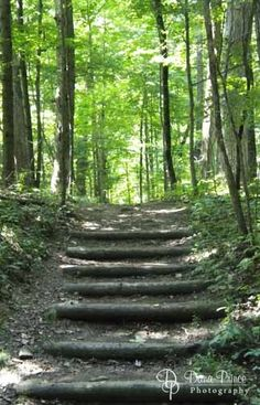 Cuyahoga Falls State Park, Ohio Been there and love it. What a real park looks like.