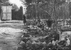 À Dresde, en 1950, une Allemande rend hommage aux morts de février.