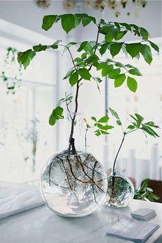 LANDET JÄRNA : Round glass vase Landet Jarna ; Gardenista | Sumally (サマリー)