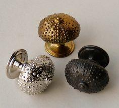 Beautiful, textured sea urchin cupboard knobs..fantastic.