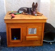 Captain Morgan - Northern California:  several years of being tried and tested, this dog house has been proven to be the most comfortable and the safest home you can build for your beloved dog.