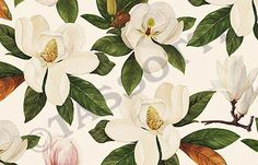 Tassotti - Paper Magnolia Multi-use decorative paper for cardboard articles, origami, découpage, gift wrap 85 gr