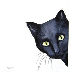 Cat Art - Curious -Black Cat - Signed Art Print - Watercolor black cat... (€19) ❤ liked on Polyvore featuring home, home decor, wall art, animals, cat, decor, cat home decor, black cat home decor, watercolor animal paintings and water color painting