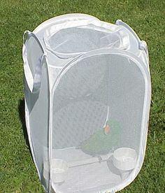 Hamper Bird Travel Carrier - PetDIYs.com Great idea! Not only see outside but feel the wind