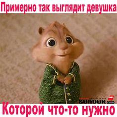 #смешно #интернетмагазин #магазин #SUNDUK #прикол #бурундук #followme #девушка #мужчина #хочу #крик #стильно #модно #оригинально #вшоке #одежда #follow #классно #кожа #украина #работа #лайк #идеально #smile #smile #face #hair  #желание
