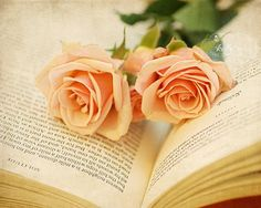 """""""Romantic Solitude""""- Sweet peach roses in an open book (""""Walden"""", by Henry Thoreau). Fine Art Print. Professionally printed upon order. My photographs are professionally printed with archival inks on"""