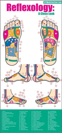Foot reflexology. This is why applying EO's to the bottoms of your feet works so well.