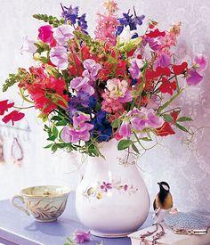 kuhles stiefmutterchen pflegetipps und nutzliche infos bestmögliche pic oder bfafccaade summer flowers flower pots