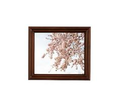 """Signs of Spring in Paris Framed Print by Rebecca Plotnick, 13 x 11"""", Ridged Distressed Frame, Espresso, No Mat"""