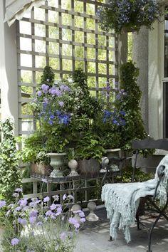 beautiful idea for a backyard patio or porch. by proteamundi Dream Garden, Garden Art, Garden Design, Home And Garden, Garden Walls, Garden Nook, Porch Garden, Side Garden, Backyard Patio