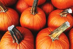 Diet and Nutrition: Health Benefits of Pumpkin Nutrition Education, Fig Nutrition, Nutrition And Mental Health, Blackberry Nutrition, Coconut Milk Nutrition, Broccoli Nutrition, Cheese Nutrition, Nutrition Plans, Nutrition Tracker