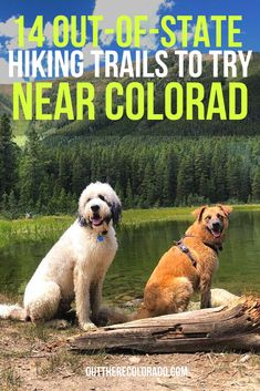 It's no secret that dogs can be some of the best hiking companions around. Here are 12 dog-friendly trails located in Colorado known for featuring water sources, shade, and more to explore with your four-legged friend. #OutThereColorado #Travel #Colorado #ColoradoVacation #ColoradoSprings #Denver #Breckenridge #RockyMountainNationalPark #Mountains #Adventure #ColoradoFall #ColoradoPhotography #ColoradoWildlife #Mountains #Explore #REI #optoutside #Hike #Explore #Vacation Hiking Dogs, Hiking Trails, Colorado Springs, Colorado Hiking, Water Sources, Rocky Mountain National Park, Four Legged, Dog Friends, Wildlife
