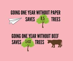 A perfect addition to the posters above office printers - Good to know - Vegan Food Vegan Facts, Vegan Memes, Vegan Quotes, Vegan Humor, Vegetarian Facts, Vegetarian Quotes, Going Vegetarian, Save Our Earth, Save The Planet