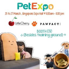 Has your fur-kids ever tasted Bak Kut Teh? Now @pawfact made it into a bite size treats that every fur-kid will surely enjoy.. Want to make it more challenging? Stuff it into one of the many varieties of puzzle toys from @littlecherry0505 and have fun watching them enjoy the treats while teasing their brain.. Wats even better? There is promotion package which includes set of puzzle toy and treats  Apart from toys we are also showcasing our latest beddings bow ties apparels and some items on…