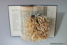 book Art | Selected Poems of Thomas Hardy | Bookstruction