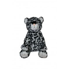 Cuuute Snow Leopard!