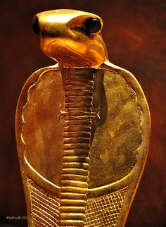 "Uraeus cobra artifact in Egyptian King's Tutankhamun's tomb.The Uraeus , ""rearing cobra"") is the stylized, upright form of an Egyptian cobra (asp, serpent, or snake), used as a symbol of sovereignty, royalty, deity, and divine authority in ancient Egypt. The Uraeus is a symbol for the goddess Wadjet, who was one of the earliest Egyptian deities and who often was depicted as a cobra."