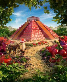 tomates, alubias, perejil...
