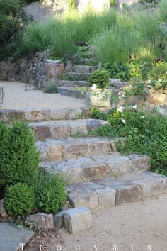 Stone stairs garden pathways Ideas The Effective Pictures We Offer You About contemporary Garden Design A quality Jardin Decor, Hillside Landscaping, Landscaping Ideas, Patio Ideas, Natural Landscaping, Outdoor Landscaping, Outdoor Steps, Garden Stairs, House Stairs