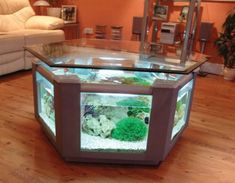 Fish Tank Coffee Table.