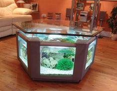 Fish Tank Coffee Table - internal design