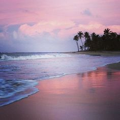 Inspire and indulge every sense amongst the gentle breezes and native fragrances of the Punta Cana coast.