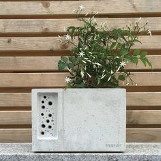 I've just found Concrete Planter With Bee Hotel Beepot. The Beepot bee hotel is inspired by our award winning bee brick, only this time we've added a diner! We're calling it our Bee&B!. £49.95