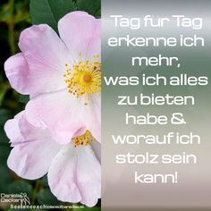 #affirmation #sprüche #selbstcoaching #selbstbewusstsein #selbstliebe #selbstvertrauen #selbstwert #seelencoaching #mantra Do You Believe, Beautiful Dream, Dream Life, Mantra, Law Of Attraction, Thoughts, Lifestyle, Instagram, Plants