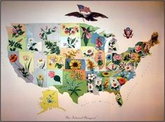 Map 100 Year Old Antique Vintage US State Flower Map 100 by p1xie, $100.00