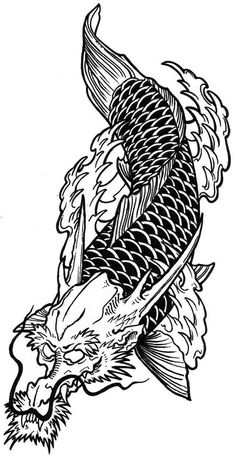 Get Thousands of Koi Fish Dragon Tattoo Symbolism Design Fantastic Designs With Images and Photos Dragon Tattoo Drawing, Koi Dragon Tattoo, Tribal Dragon Tattoos, Koi Fish Tattoo, Fish Tattoos, Leg Tattoos, Tattoo Drawings, Tatoos, Dragon Koi Fish