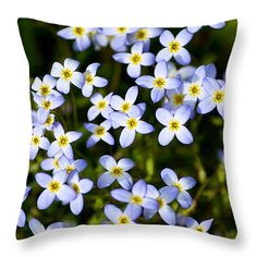 "Dancing Bluet Flowers 14"" x 14"" Throw Pillow by Christina Rollo.  Our throw pillows are made from 100% cotton fabric and add a stylish statement to any room.  Pillows are available in sizes from 14"" x 14"" up to 26"" x 26"".  Each pillow is printed on both sides (same image) and includes a concealed zipper and removable insert (if selected) for easy cleaning."