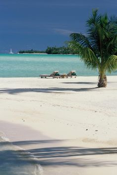 Beach vacation in Bora Bora....define rely want to go here someday!!!